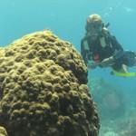 Instructor Nate led us on a fantastic dive